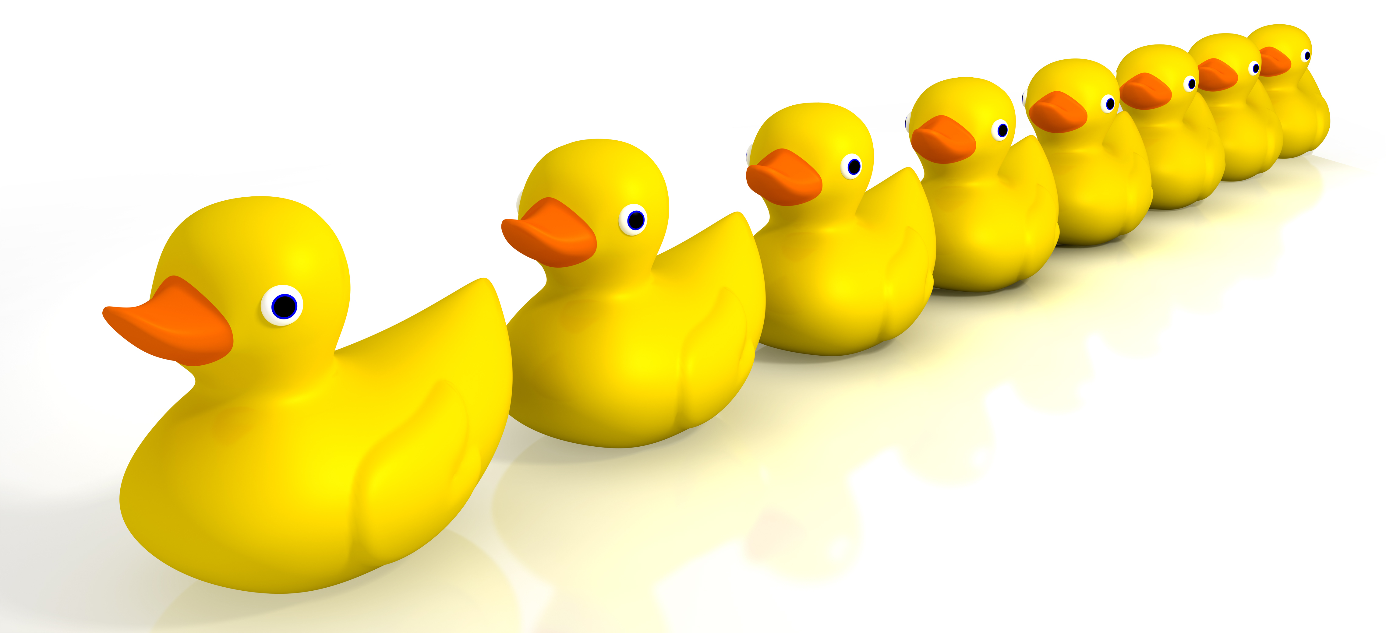 Your Toy Rubber Ducks In A Row
